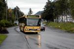 Mellom 20 og 30 busser har kamera ombord.