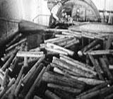 Sagbruksarbeidere i Canada fikk hjerteinfarkt av støy. Foto: NRK