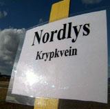 Nordlys-gresset er trøndersk. Foto: NRK