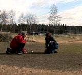 Muggsoppen kan drepe gresset. Foto: NRK