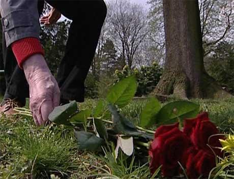 En blomst på graven der mange norske frontsoldater ligger begravet.(Foto:NRK)
