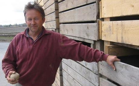 Potetprodusent Odd Michelson fra Sør-Odal ser med bekymring på den store konkurransen fra importpotetene. Foto, Vera Wold; NRK.