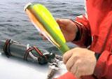 Her gjøres senderen klar til å bli skutt inn i hvalspekket. Foto: Leif Nøttestad.