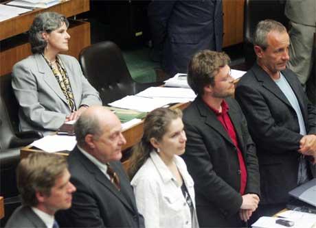 Østerrikske medlemmer av nasjonalforsamlingen stemmer for EU-grunnloven.(Foto:AP/Scanpix)