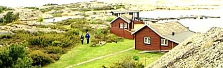 Hytteeieren mener folk kan bruke en sti på baksiden av eiendommen. Foto: Magnus Brenna Lund/NRK