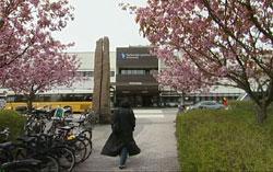 Et prøveprosjekt ved bl.a. Sørlandet sykehus har vist at forekomsten av benskjørhet er meget stor i Norge.