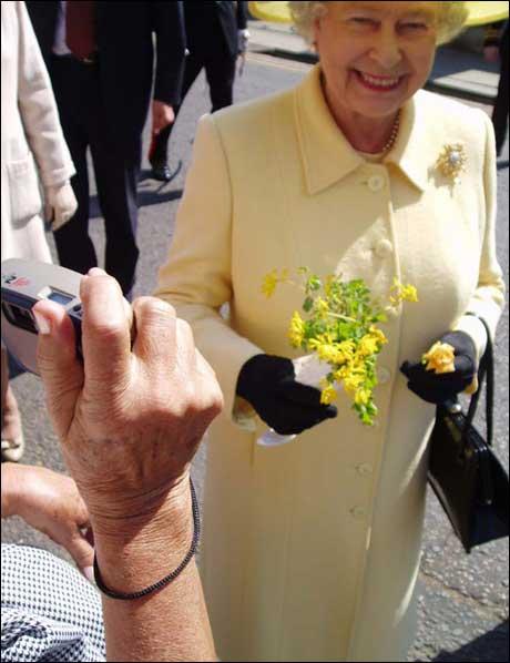Og ganske riktig: Etter et øyeblikks nøling tar dronningen i mot blomstergaven, og smiler høflig. Teorien er bevist: Dronninger kan ikke nekte å ta i mot blomster, uansett hvor puslete de er.