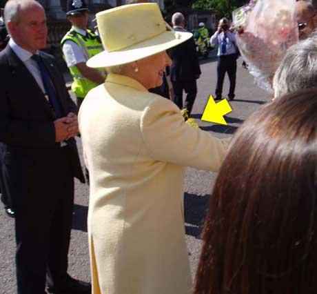 Og slik gikk det til at dronningen måtte gå rundt med de stusselige blomstene resten av dagen.