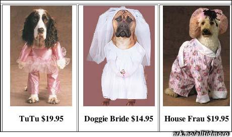 Disse hundekostymene er ekte!