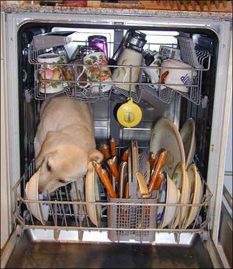 ... har sine egne metoder for å få unna oppvasken...