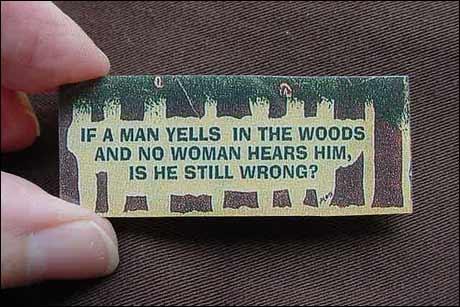 """En variant av """"Hvis et tre faller i skogen og ingen hører det, lager det likevel lyd?"""""""