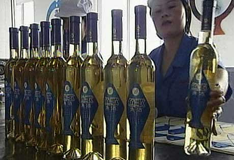 Produsenten passer godt på at fiskesmaken ikke blir for sterk i vinen som blir distribuert. (RTV)