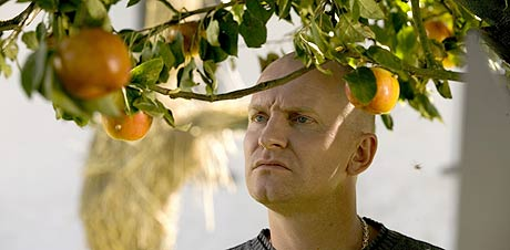 Adam (Ulrich Thomsen) sjekker eplene. Foto/Copyright: Nordisk Film
