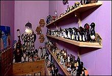 Cathrine har en noe uvanlig hobby, nemlig å samle på pingviner!