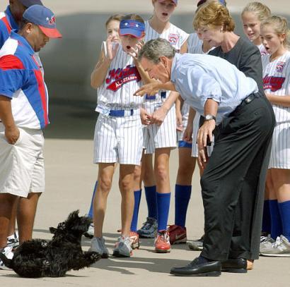 2003: Presidenten mister sin egen hund, Barney, i bakken. (ekte)
