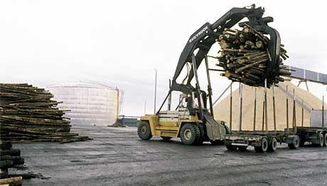 Videreforedling av norsk tømmer har vært en viktig oppgave for Norsk Skog og en av grunnene til at skogeierne har hatt store eierinteresser. Her fra Norske Skog sin fabrikk på Skogn i Trøndelag. Foto: Scanpix.