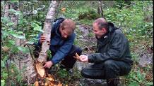 Per Olav og Alex fekk i alle fall sjå spor etter beveren. Foto: NRK