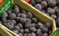 Frukt og bær med sterke farger, som blåbær, er en god kilde til antioksidanter.