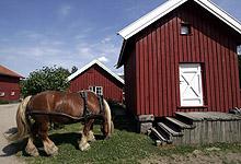 Færre og færre går på besøk til hverandre på bygda. Foto: Jarl Fr. Erichsen / SCANPIX