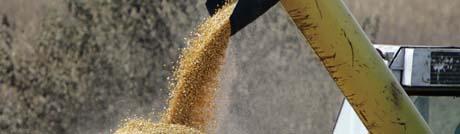 Landbrukssubsidier i rike land er et hovedproblem i forhandlingene.