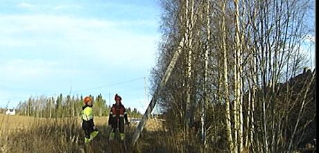 Mannskaper fra Eidsiva Energi ser på ødeleggelsene etter vindens herjinger i natt. Foto: Jørn Norli