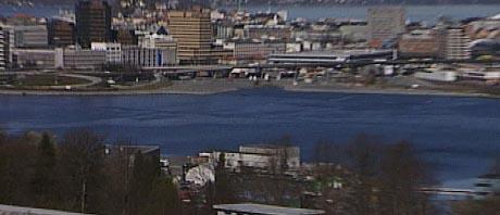Her skal studentboligene bygges i nedre bildekant med utsikt mot byen. Foto: NRK