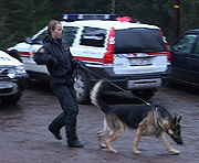 Politiet har i dag gjort søk rundt Langevannet i Re kommune.