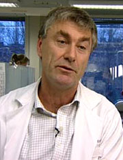 Ivar Espelid er professor ved odontologisk fakultet ved Universitetet i Oslo. Foto: NRK/Puls