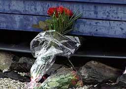 Blomar på brannstaden i Florø. Foto: Cosmin Cosma, NRK.
