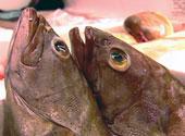 Laks, makrell, sild og tunfisk inneholder mye Omega-3.