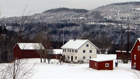 Det skal fortsatt drives landbruk på Duun i Grong. Foto: NRK Trøndelag.