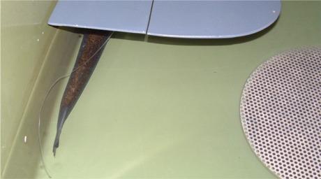 En liten plate gir skjul for fisken. Sammen med strømmende vann gjør det at her står laksen 95% av tiden.