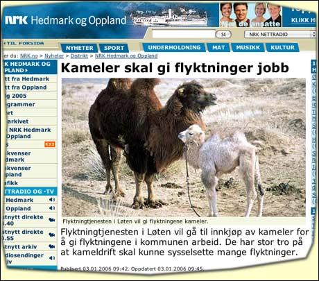 Nrk.no melder at kameler blir det nye store på Løten.