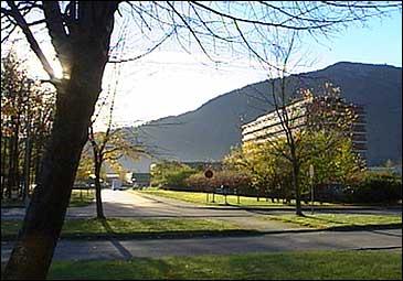Administrasjonen for Helse Førde HF held til på Sentralsjukehuset. (NRK)