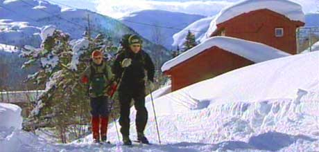 Mjølfjell er eit populært område for skituristar. (Foto: Anette Berentsen/NRK)