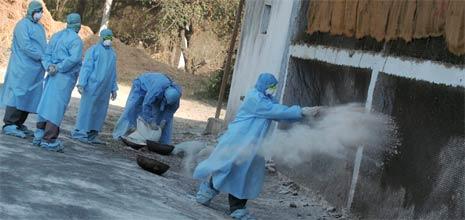 Indiske veterinærer kaster desinfeksjonsmiddel på en tom hønsefarm i Navapur i India, nord for Mumbai i dag. (Foto: Reuters/Scanpix)