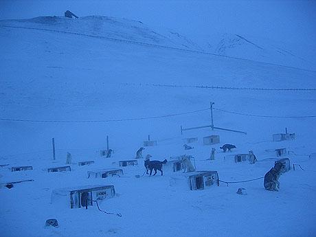 Fra hundegården i Bolterdalen. Legg merke til den gamle kullgruva som ligger på toppen av fjellet i bakgrunnen. Foto Andreas Toft.