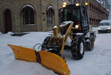 Dette kan bli et sjeldent syn fram til snøen forsvinner. (Foto: Rune Fredriksen/NRK Østfold)
