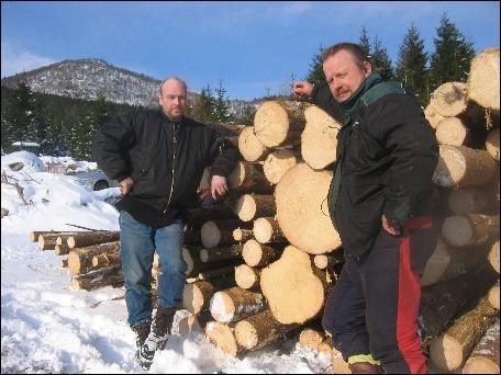 Skogeigar Lars Helge Eidhamar og skogentrepenør Gunnar Skjeggedal meiner mykje av granskogen må takast no og ikkje toler å vente med i 10 år. Foto: Gunnar Sandvik