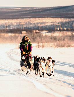 LEDER: Harald Tunheim dro videre mot Tana klokka 0805 i morges. (Foto: Kjetil Vaage Øie)