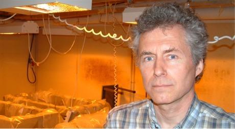 Professori Martin Romanschuk