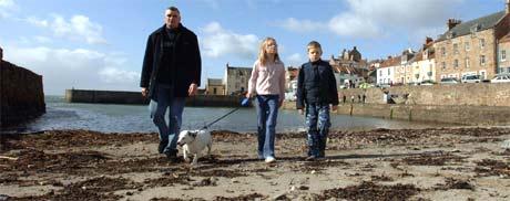 I denne havnen i Cellerdyke på østkysten av Scotland, ble den smittede svanen funnet. (Foto: AP/Scanpix)