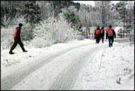 Mannskap fra Røde Kors lette lørdag i et skogsområde etter Gry Hosein. (Arkivfoto: NRK)
