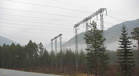 Strid om kraftlinjer i Valle (foto: Svein A. Sundsdal)