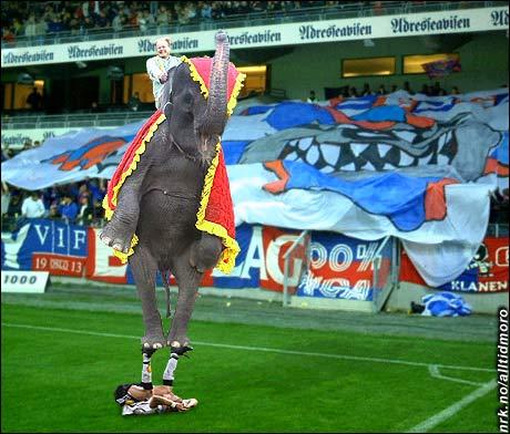 Enkelte klager over at det er blitt for mye sirkus i norsk fotball.