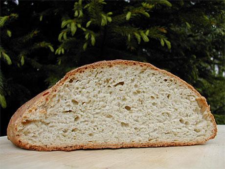 Putt litt granskudd i brøddeigen og få et flott og veldmakende brød. (Foto: Inger-Lise Østmoe)