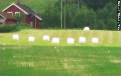 (Foto: NRK Alltid Moro)