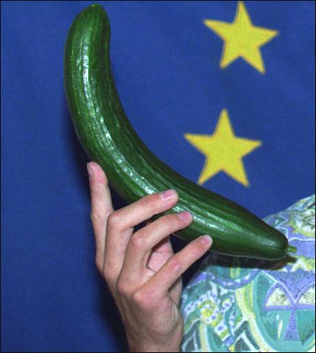 EU har vedtatt ny standard for hvordan en agurk skal se ut. 'Jeg synes den nye agurk-formen er fin', sier Odd Nerdrum i en kommentar. (Kjell Lindås) Foto: Scanpix