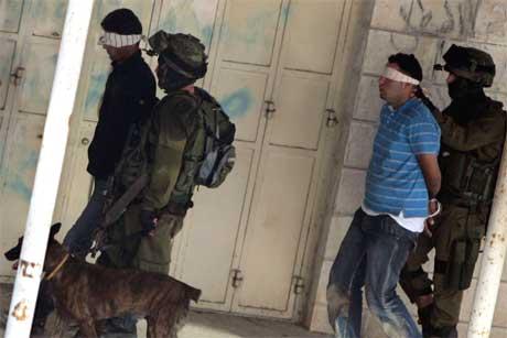 Palestinere blir ført bort av israelske soldater under en militæroperasjon i Ramallah (Foto: reuters/Scanpix)