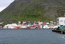Havna er grunnen til at Honningsvåg finnes. Fiskeriene er fortsatt viktige, men det er cruiseturistene også. Foto: Tron Soot-Ryen, NRK